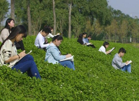 郑州初中考不上高中还可以上什么学?